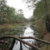 Along the river Photo Credit: Tom Hogan